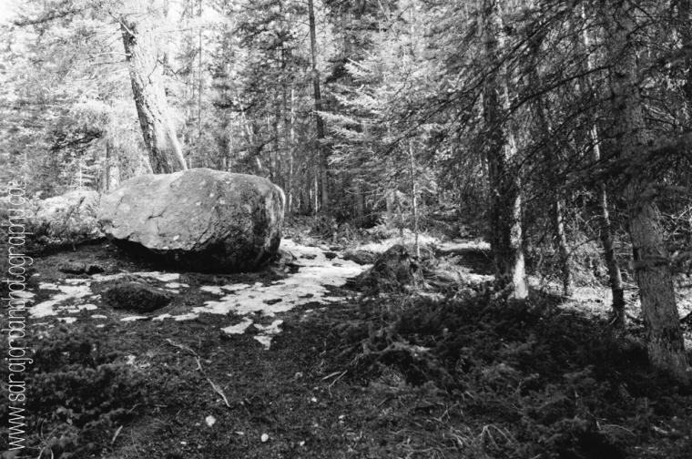Jasper & Banff-12