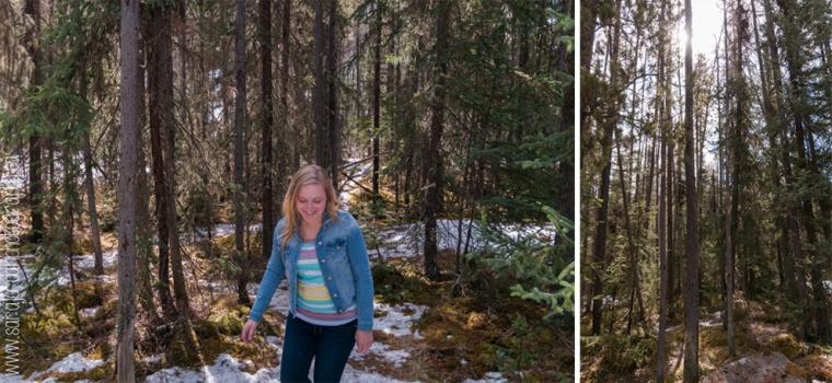 Jasper & Banff 5-6
